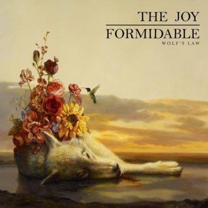 The Joy Formidable 2