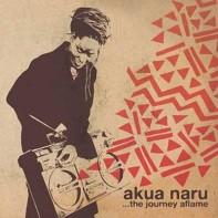 Poetry: How Does It Feel? • Akua Naru